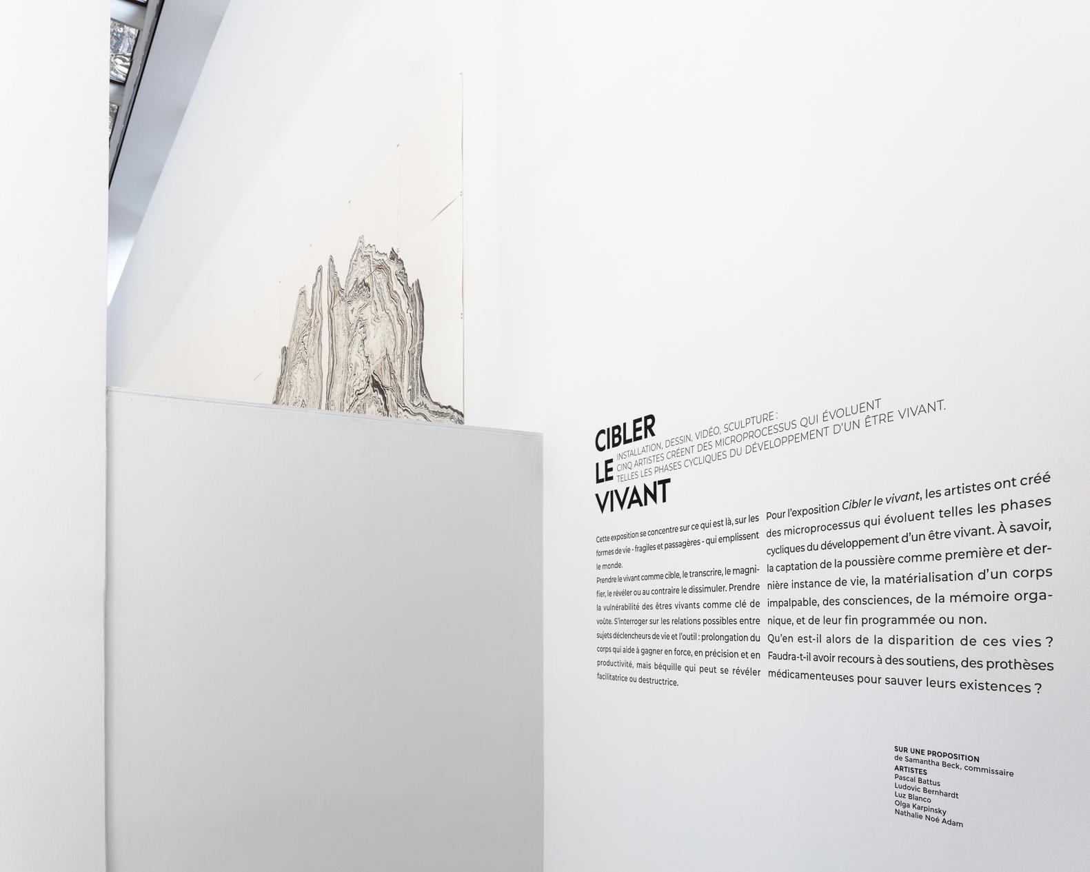 ┬®AtelierFindArt-CentreTignous-2020-01-14